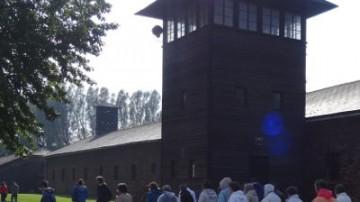 Auschwitz 400x400