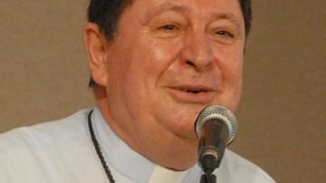 CardinalBrazdeAviz