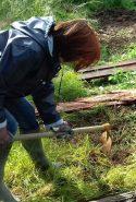 Une formation en permaculture à Marigny