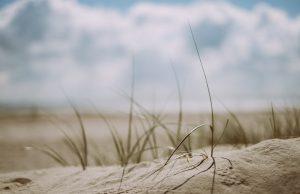 Retraite – Conversion et discernement avec Saint Ignace