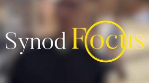 Vignette Synodfocus