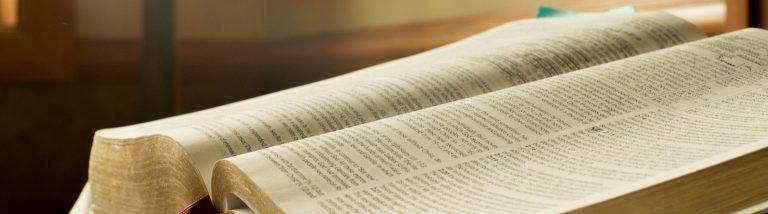Bible vepres