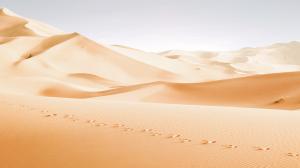 vignette grande desert t