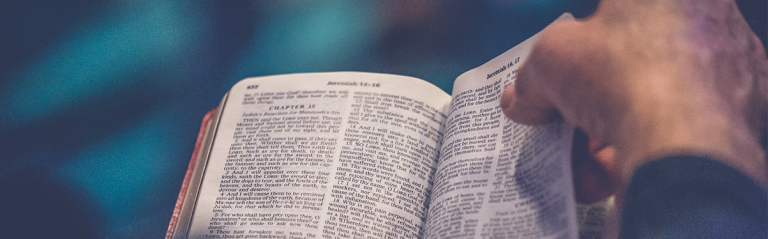 Lire Bible main