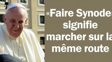 Vignette Facebook attitudes synode 1